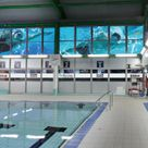An indoor poolside image showing large format full colour printed vinyl window graphics of swimmers in a pool